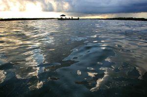 Emulsiones magnéticas pueden limpiar los derrames de petróleo