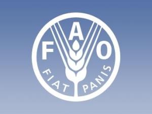 Organización de las Naciones Unidas para la Alimentación y Agricultura