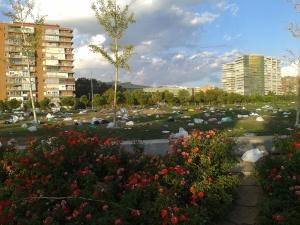 Basura en Madrid Río en zona Matadero