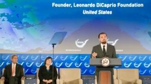 Fundación de Leonardo DiCaprio