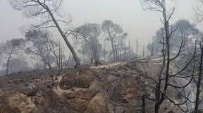Incendio, foto publicada por Hora Jaén