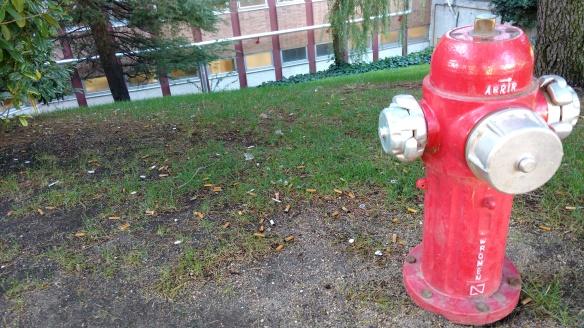 Colillas a la puerta del Hospital Universitario 12 de Octubre, Madrid